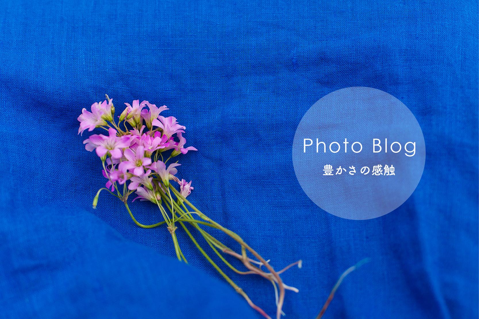 photoblogバナー